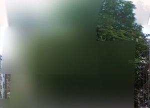 Google Street View: Alles verpixelt